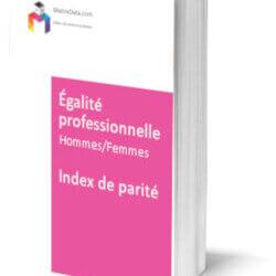 Livre blanc INDEX ÉGALITÉ PROFESSIONNELLE